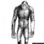 Ilustração da criatura que se pensa habitar Kemerovo na Sibéria.