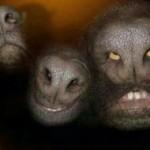 EXCLUSIVO: Fotos de invasão alienígena (Humor)