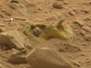 Marte 5