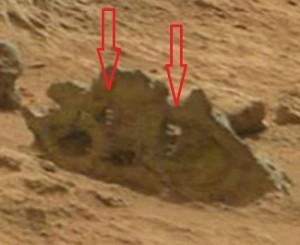 Marte 8