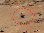 O pato de Marte