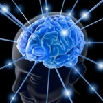 Espaço do Leitor: O que é o ser inteligente?