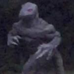 'Homem lagarto' é flagrado por mulher no quintal de sua casa – EUA