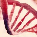 Cientistas descobrem uma segunda camada de informação oculta em nosso DNA