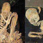 Novos esqueletos com crânios alongados são encontrados na Bolívia
