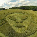 Agroglifos: Custosos trabalhos de arte, ou mensagens alienígenas?