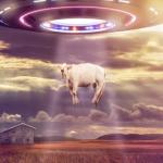 O que acontece durante uma abdução alienígena?