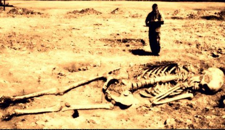 gigantes viveram na Terra