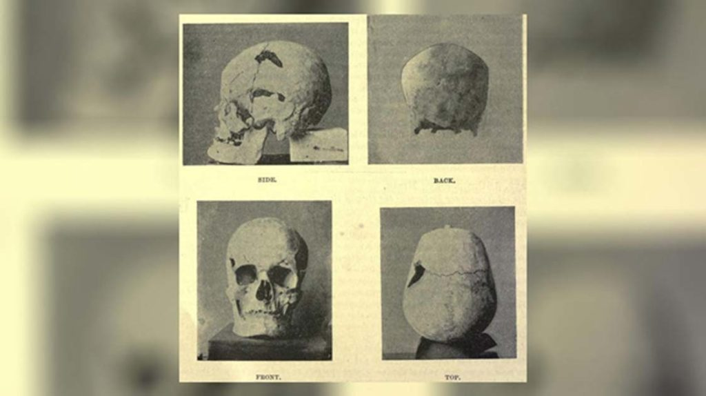faraó pode ter sido um gigante
