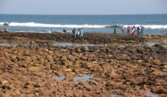 Mar recua em praia da Índia
